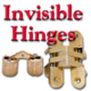 Hinges, Invisible