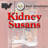 KV Kidney Shaped Lazy Susan